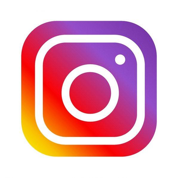 funny Instagram videos of the week