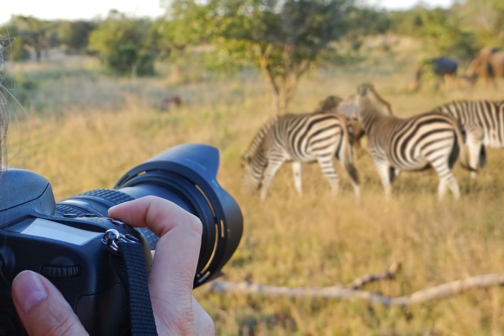 8-easy-ways-to-spot-a-tourist