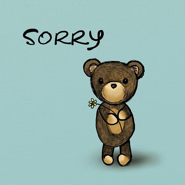 apology paragraphs