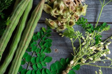 Fertility herbs in Nigeria
