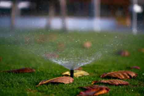 Important Tips To Keep Your Lawn In Good Condition